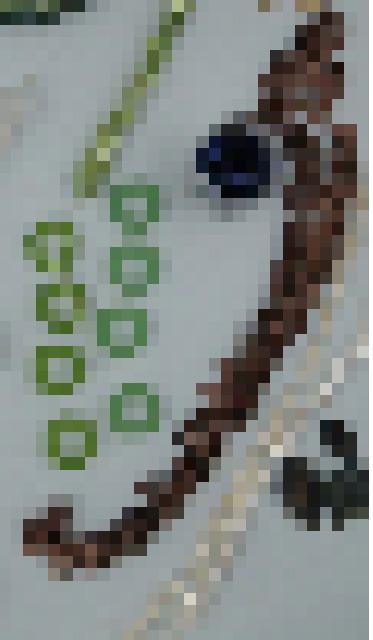 Pixel soup 1